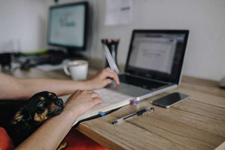 Pomysły na pracę zdalną, Praca z domu, Praca online, Praca Digital Nomad