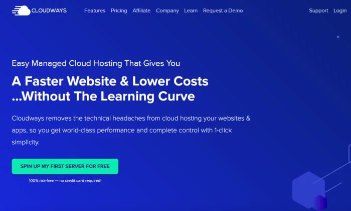 Strona powitalna Cloudways dla najlepszego hostingu WordPress
